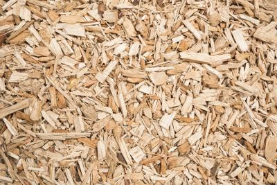 Wood chips used for making biofuels