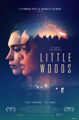 Little Woods - Poster